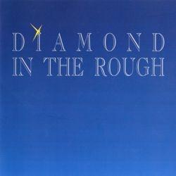 DIAMOND IN THE ROUGH - s/t
